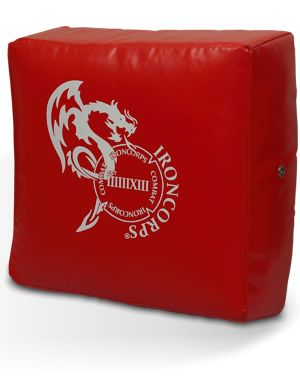 Martial Arts Kick Shield (Mini)