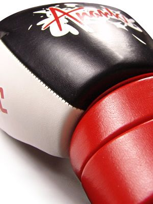 ANARK Raptor Gel Augmented Premium Leather Boxing Gloves